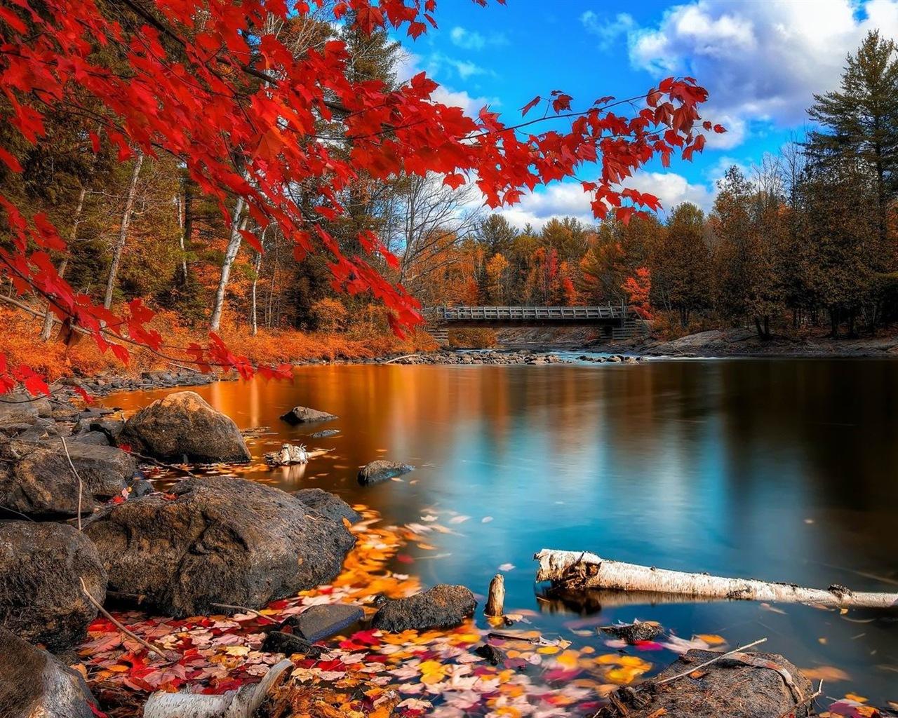 ウィンドウズ8 1テーマのhd壁紙 美しい秋の紅葉 13 1280x1024 壁紙ダウンロード ウィンドウズ8 1テーマのhd壁紙 美しい秋の紅葉 システム 壁紙 V3の壁紙