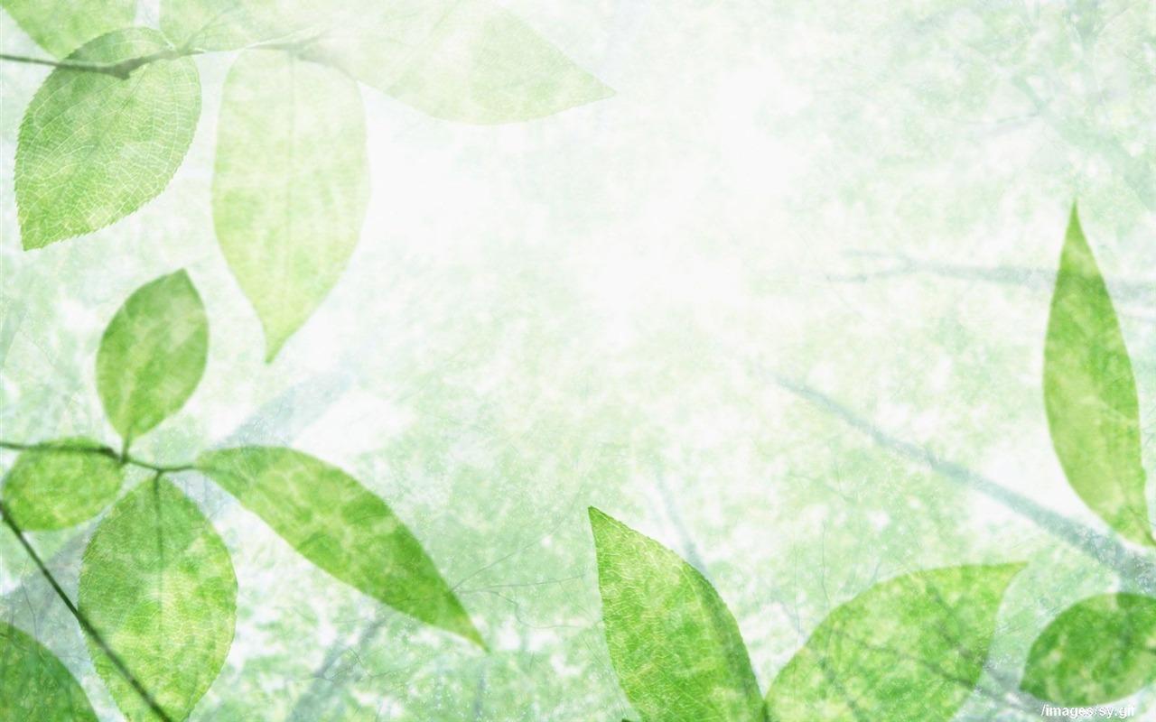 marca de agua fresca fondos de escritorio de hoja verde