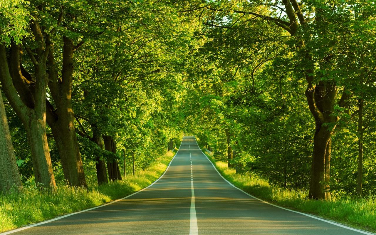 New zealand nature wallpaper 2 12 1280x800 wallpaper - Wallpapers 1280x800 nature ...