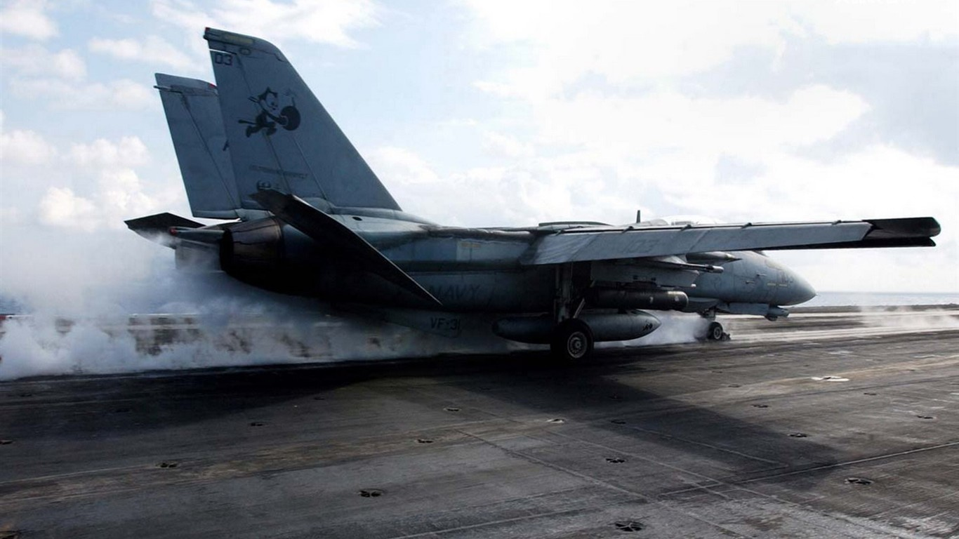 F 14 (戦闘機)の画像 p1_27