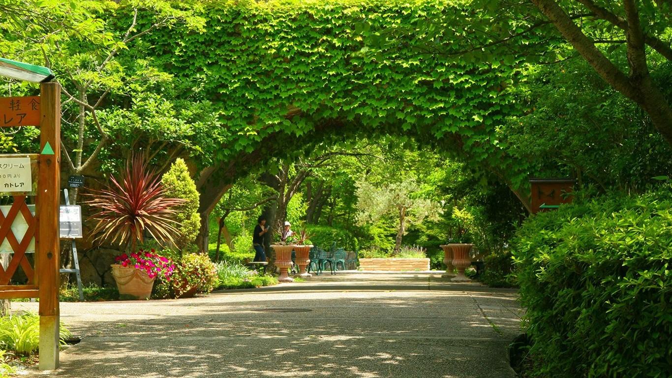 Parque hermoso fondo de pantalla 15 1366x768 fondos de for Para desarrollar un parque ajardinado