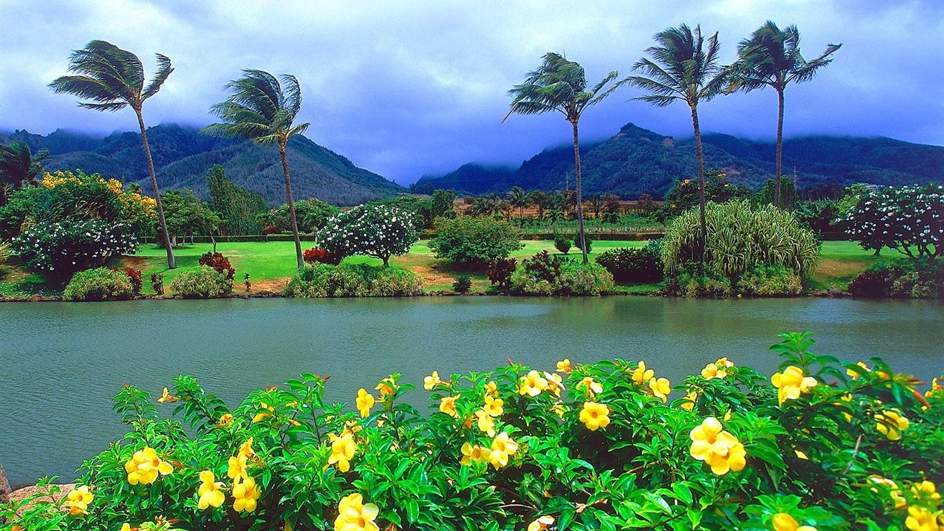 1366x768 beautiful tropical island - photo #45
