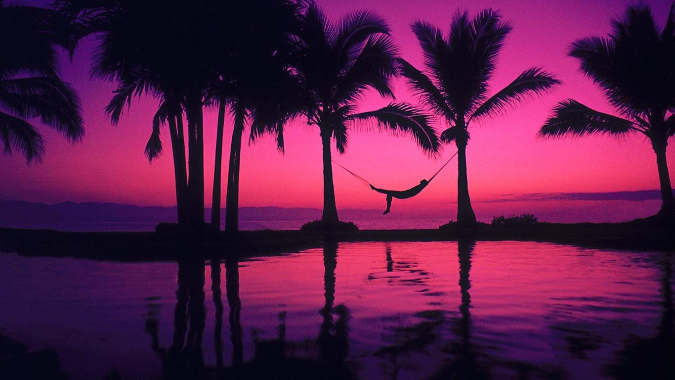 Palm Tree Sunset Wallpaper 2 10 1366x768 Wallpaper