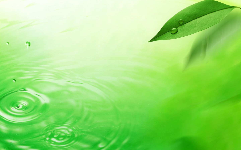 Watermark Fresh Green Leaf Wallpaper 4