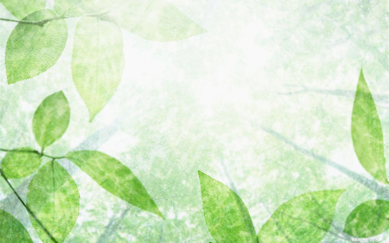 filigrane papier peint frais feuille verte 11 1440x900. Black Bedroom Furniture Sets. Home Design Ideas