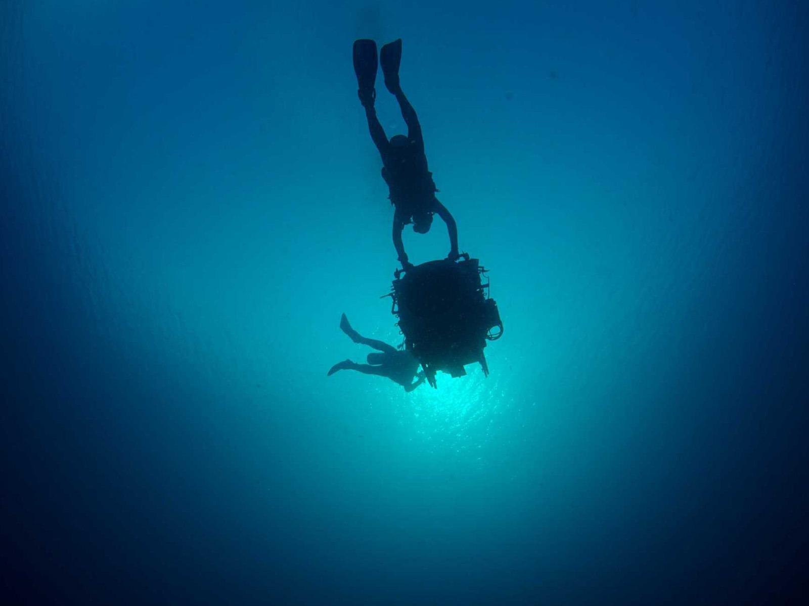 На глубине морской IMAX 3D Афиша Перми Городской портал Перми: новости, погода, афиша, работа...