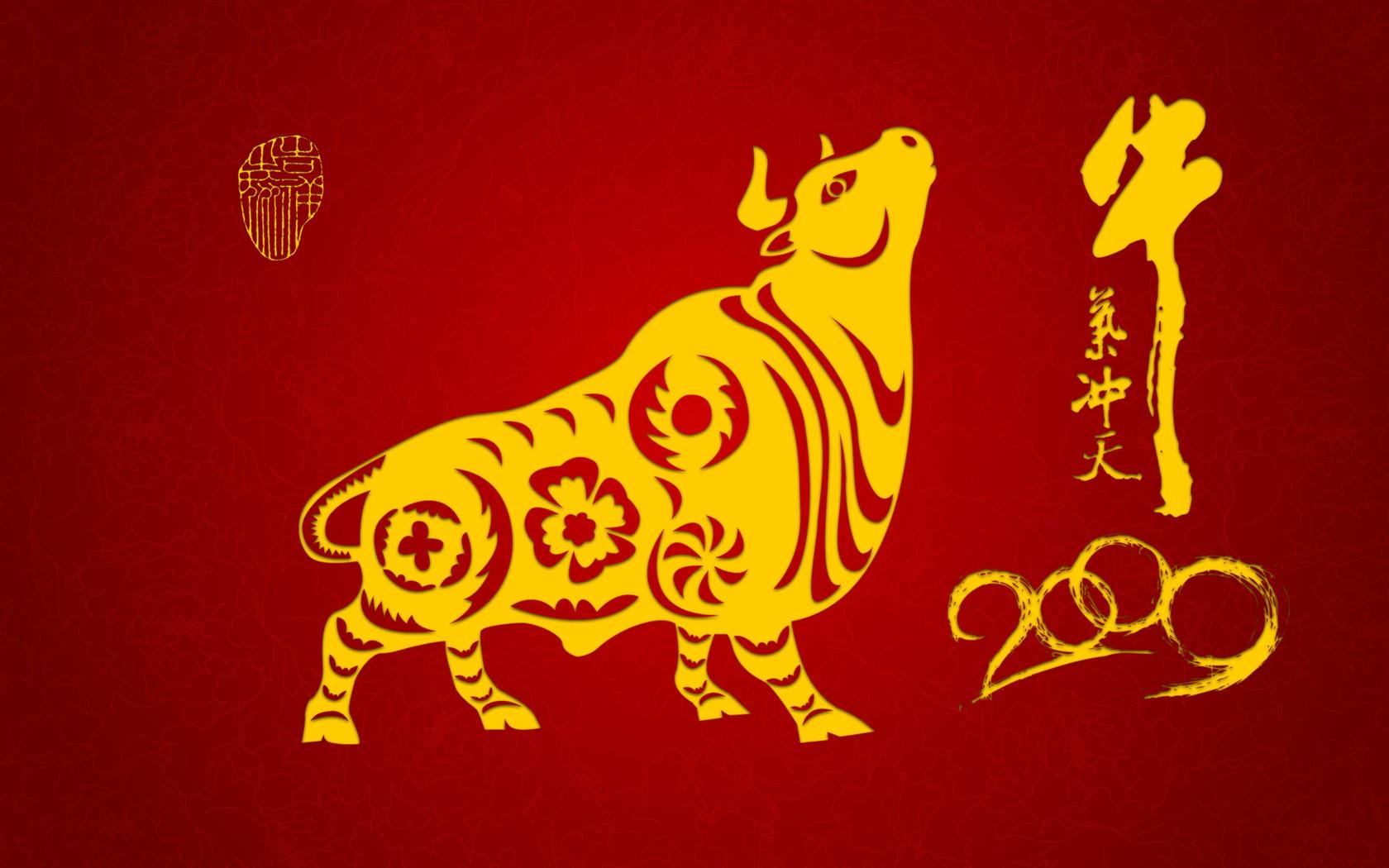 牛气冲天新年壁纸1 - 1680x1050图片