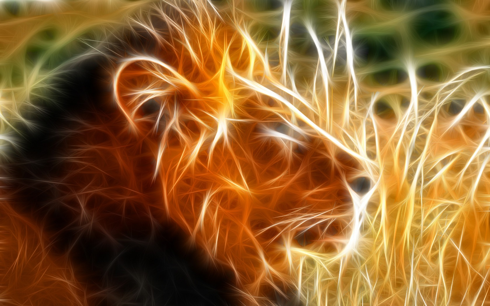 Cool Animal Wallpaper Light 1