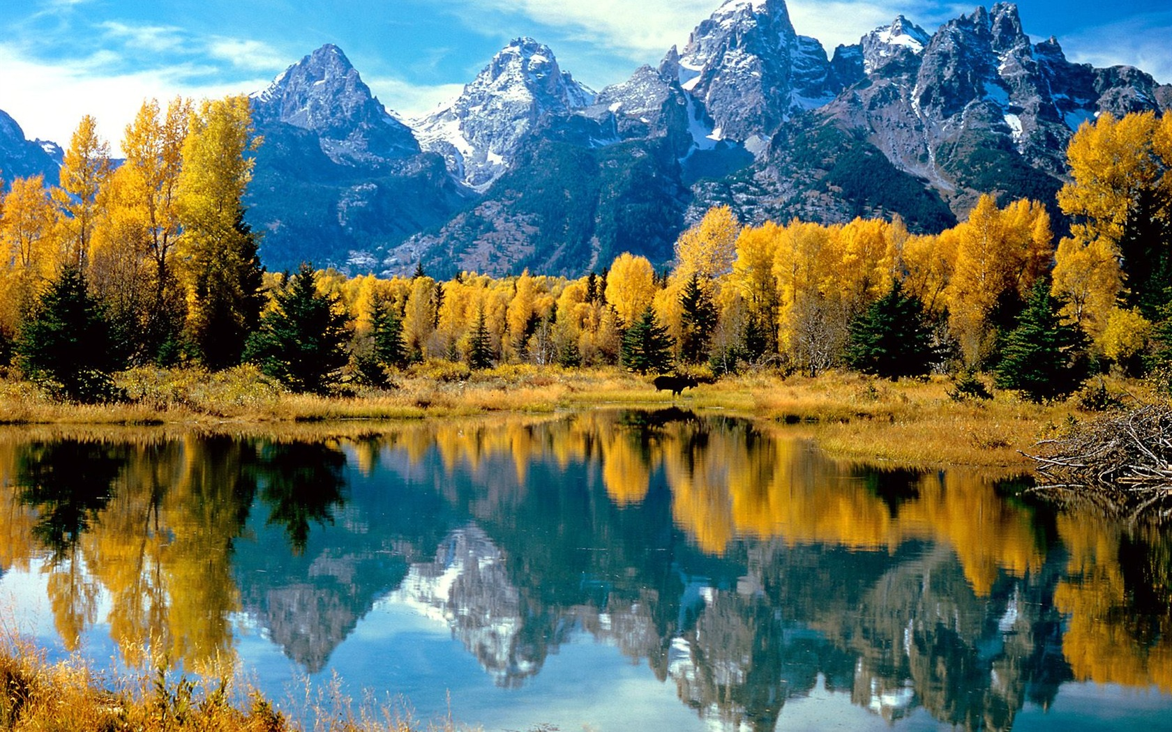 fond d 39 cran magnifiques paysages d 39 automne 19 1680x1050 fond d 39 cran t l charger fond d. Black Bedroom Furniture Sets. Home Design Ideas