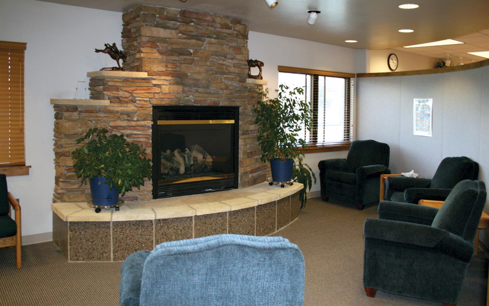 Дизайн каминов в доме фото