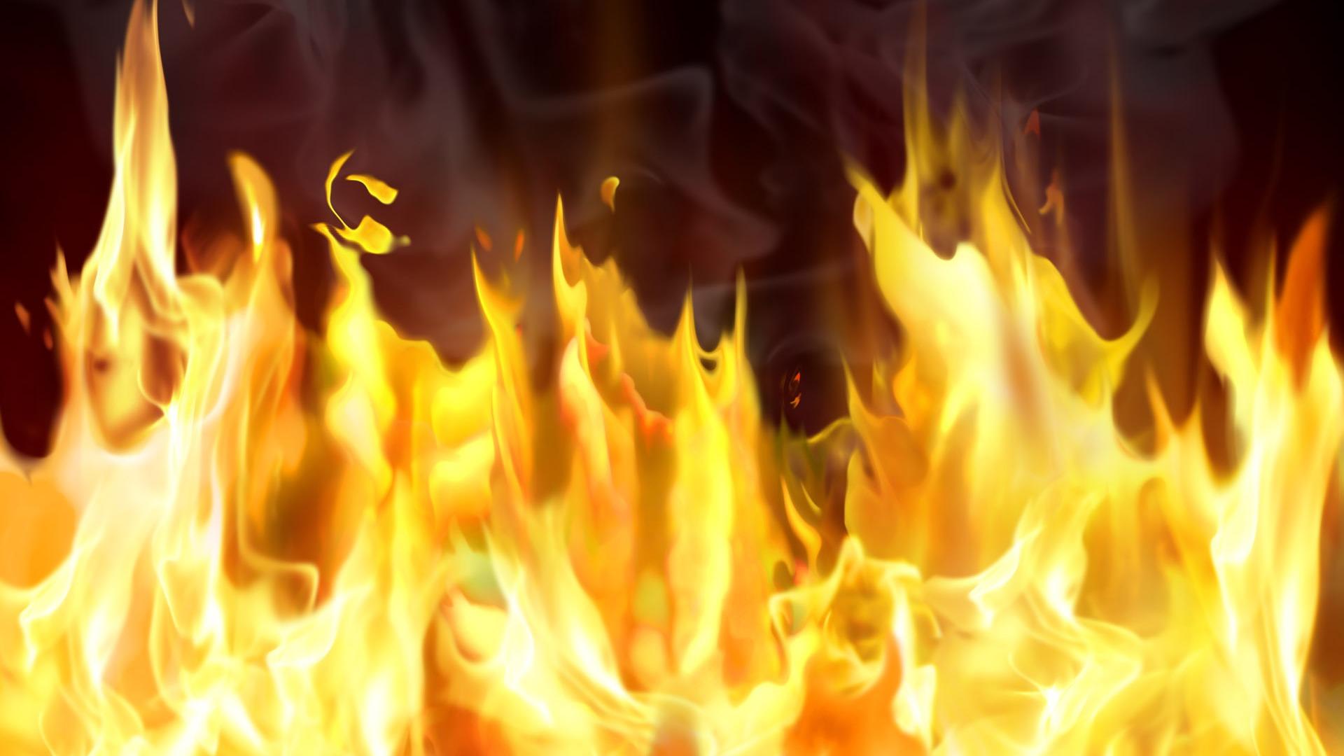 炎の画像 p1_22