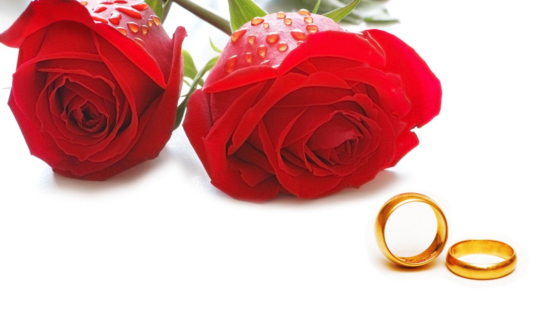 mariage et papier peint anneau de mariage 1 12 1920x1080 fond d 39 cran t l charger mariage. Black Bedroom Furniture Sets. Home Design Ideas