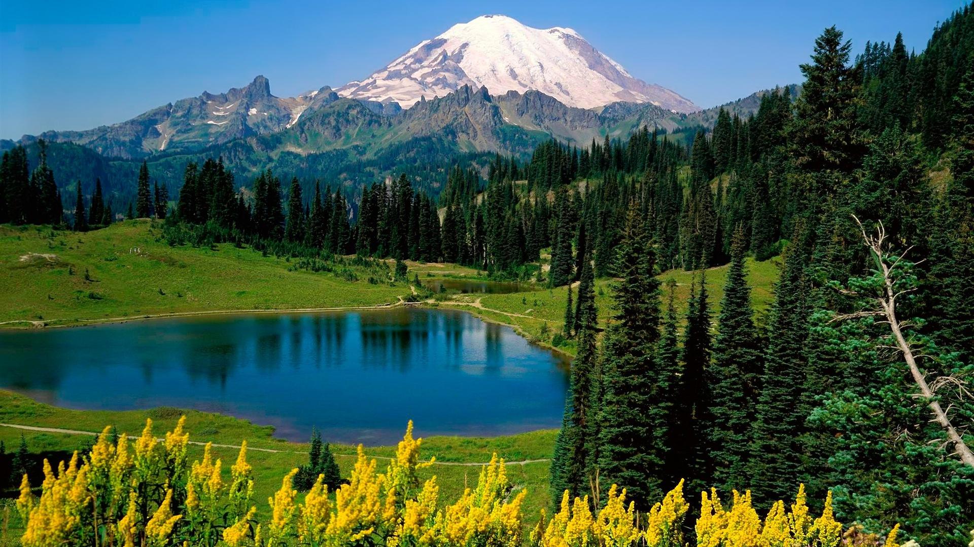 阳光森林湖泊美丽的大自然高清壁纸3 19x1080 壁纸下载 阳光森林湖泊美丽的大自然高清壁纸 风景壁纸 V3壁纸站