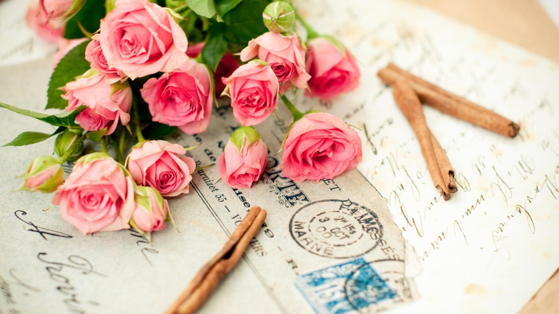 鮮やかな色 美しい花のhdの壁紙 1 19x1080 壁紙ダウンロード 鮮やかな色 美しい花のhdの壁紙 工場 壁紙 V3の壁紙