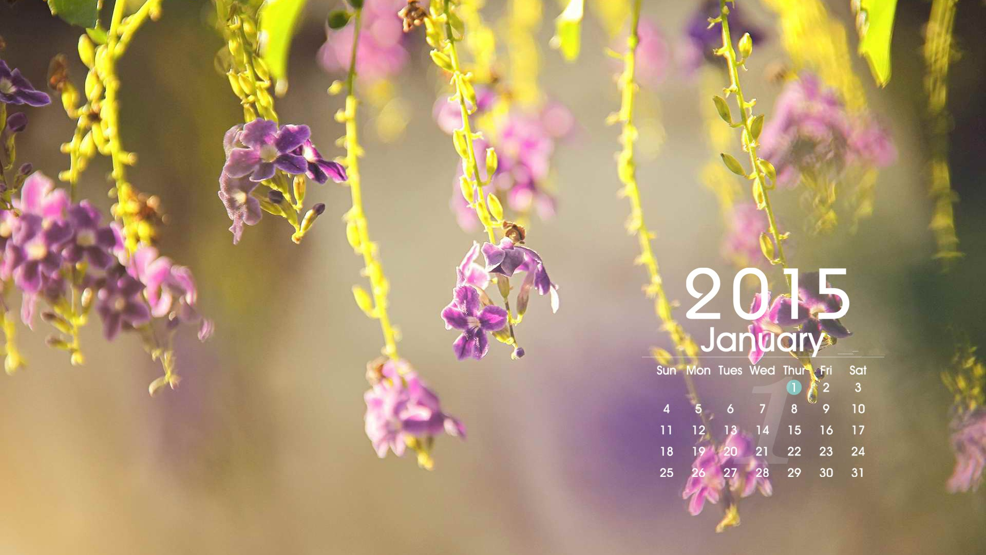 January Calendar For Wallpaper 2015/page/2 | New Calendar Template ...