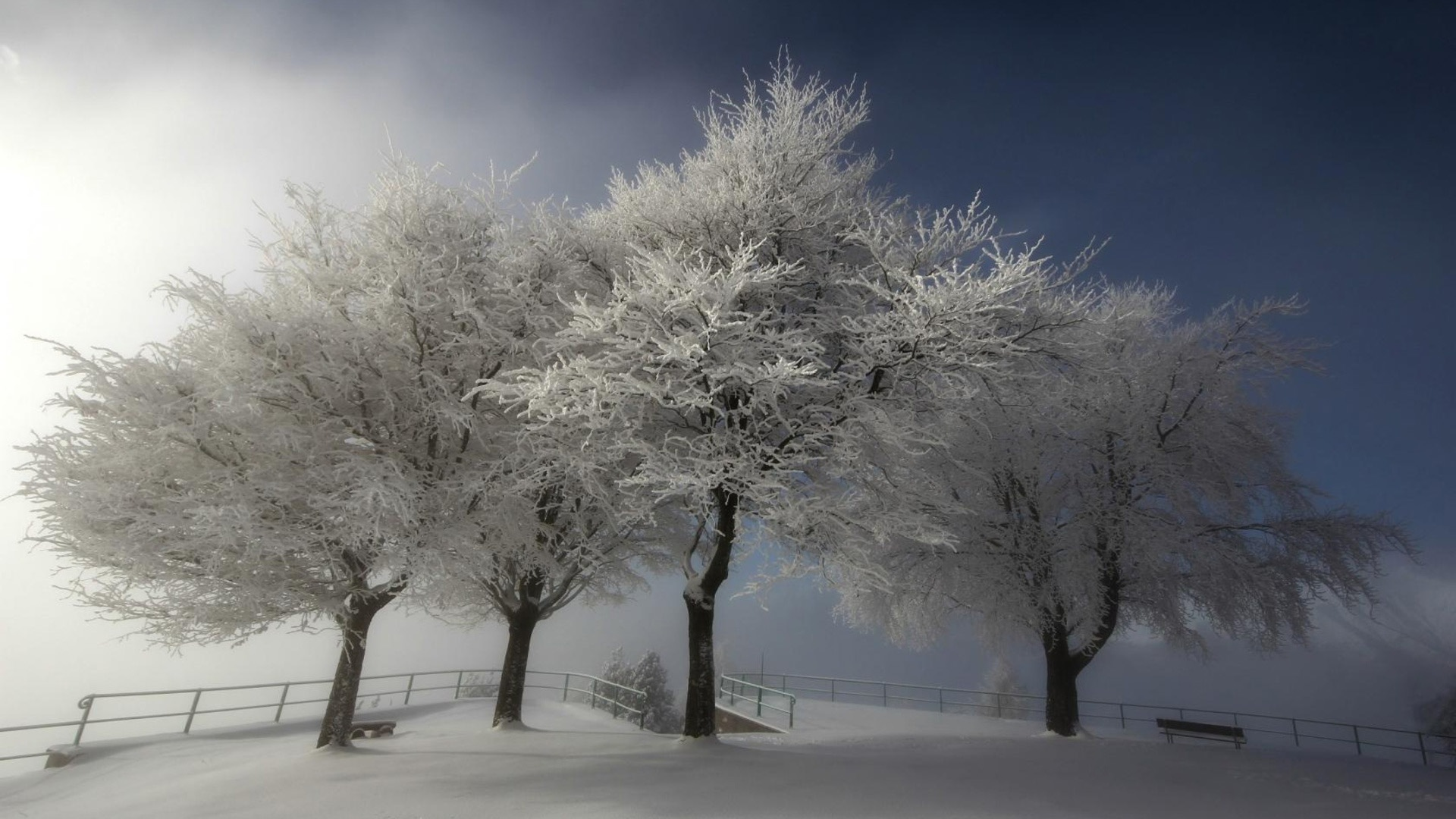 snow scenery full hd - photo #49
