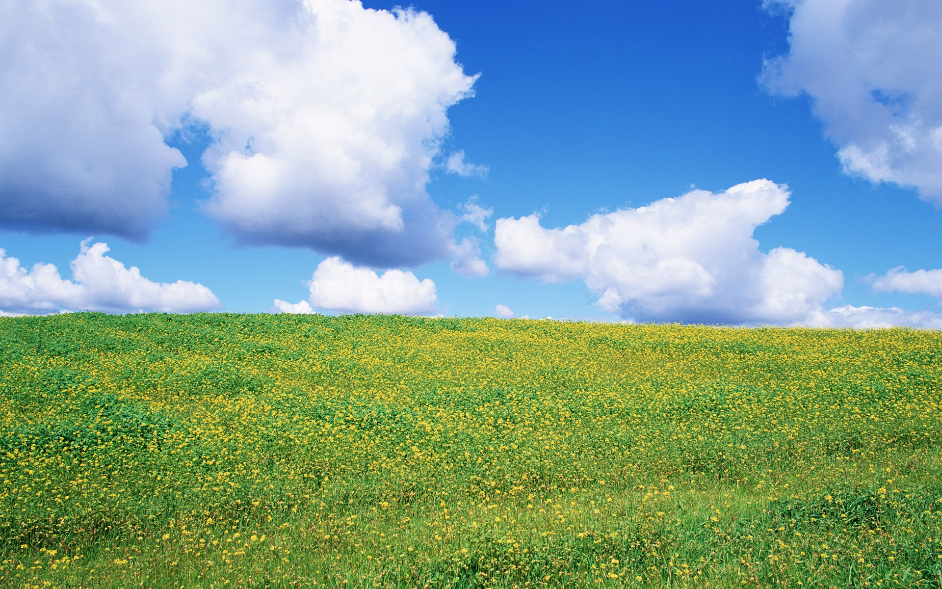 Blauer Himmel Wallpaper Blauer Himmel Weiße Wolken
