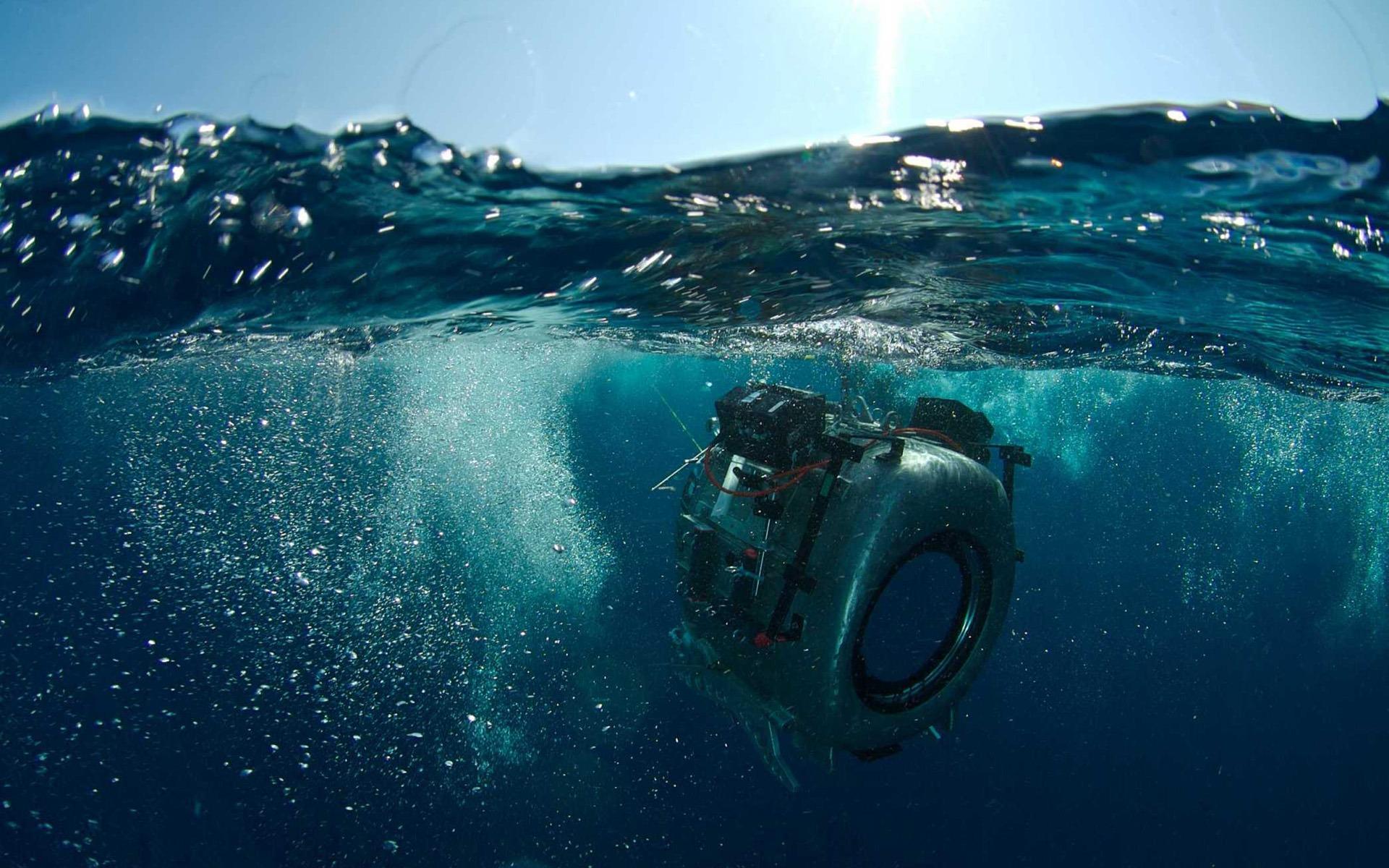 Виджет Kinonews.ru для Яндекса.  Кадр N26071 из фильма На глубине морской 3D / Under the Sea 3D...