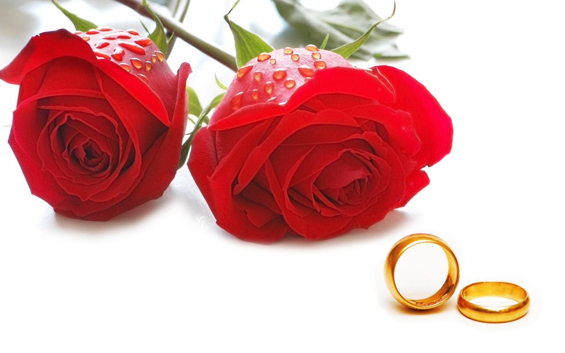 Weddings And Wedding Ring Wallpaper 1 12 1920x1200