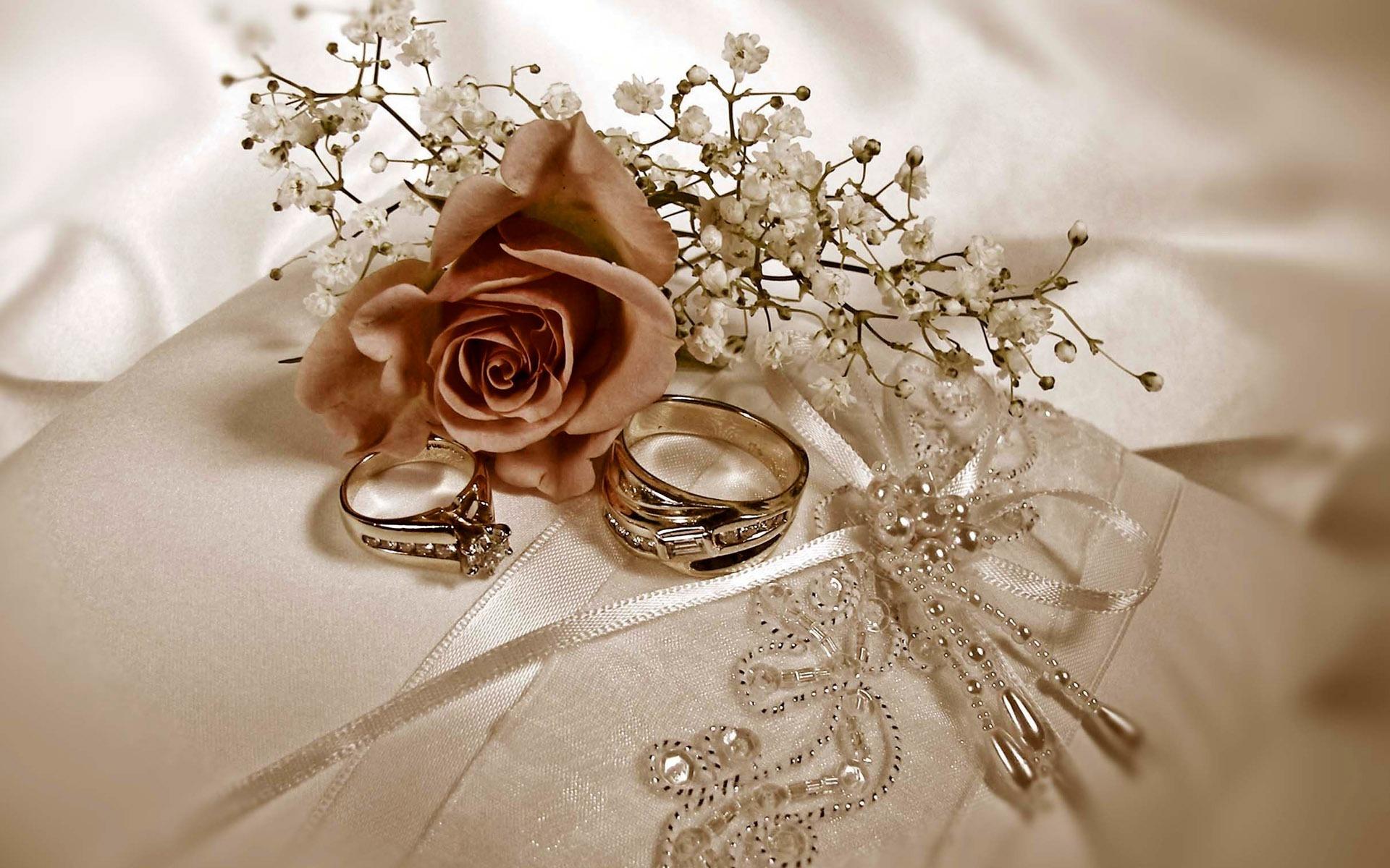 Свадьбы и свадебные кольца обои 1 13