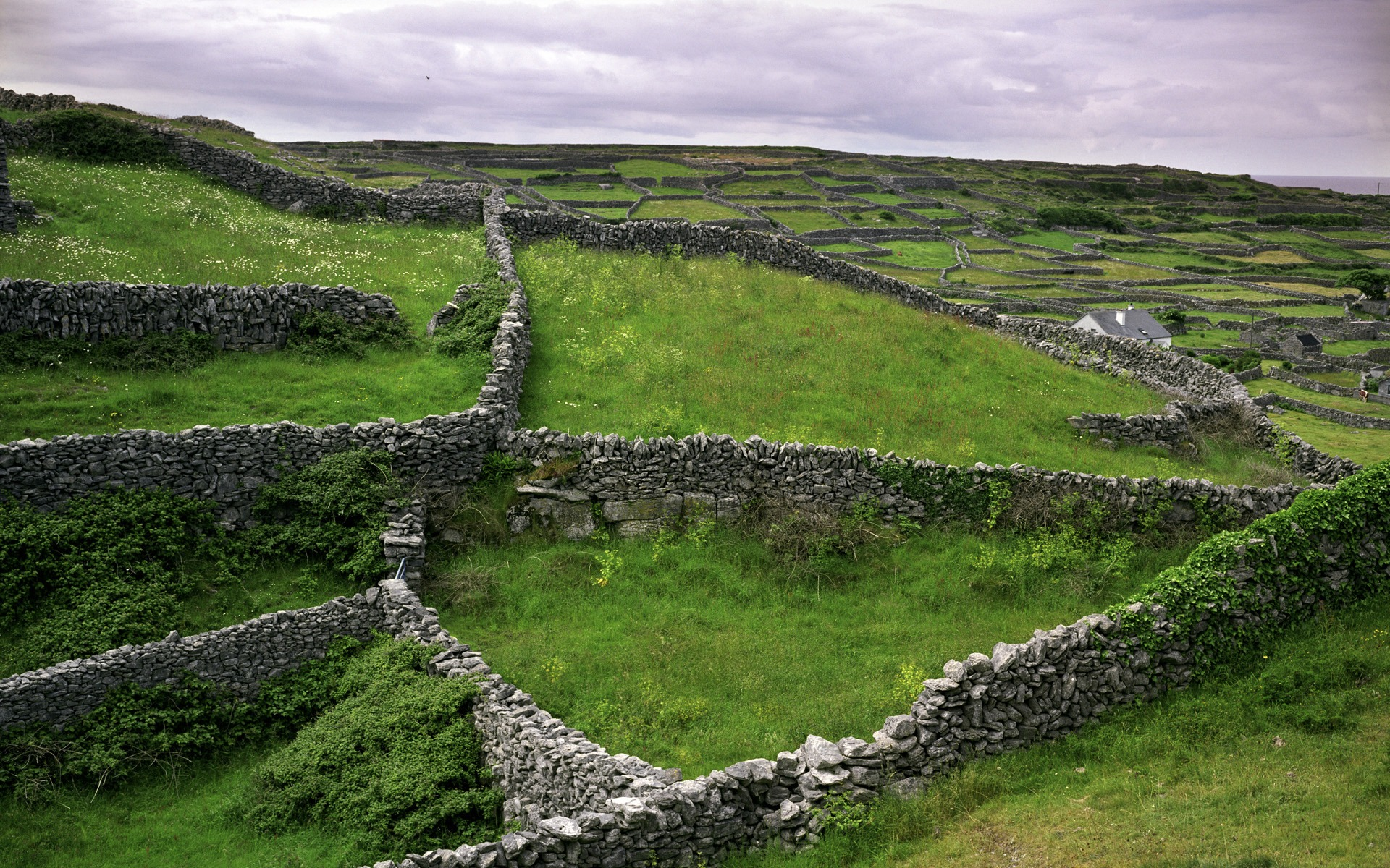 Beautiful Scenery Of Ireland Wallpaper 2  1920x1200
