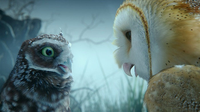 Legend of the Guardians: The Owls of Ga'Hoole 守卫者传奇(二)28