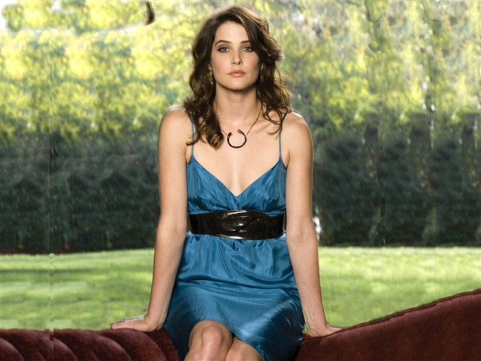 Cobie Smulders beautiful wallpaper #4