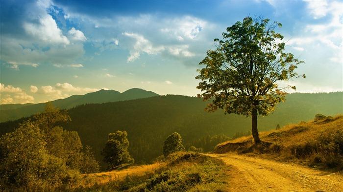 Los lagos, mar, árboles, bosques, montañas, paisaje hermoso fondo ...
