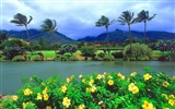 Hawaiian beach scenery