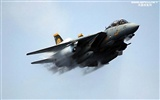 U.S. Navy F14 Tomcat fighter