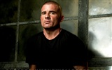 Prison Break wallpaper #14