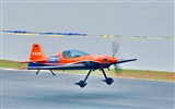 The International Air Sports Festival Glimpse (Minghu Metasequoia works) #10