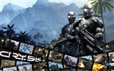 Crysis Wallpaper (3)