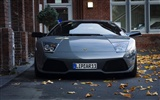 Enfriar coches Lamborghini Wallpaper
