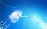 Windows7 theme wallpaper (2) #11