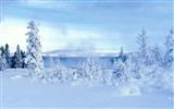 Fond d'écran HD neige hiver froid scène # 33