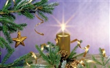 Christmas landscaping series wallpaper (14) #10
