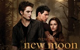 The Twilight Saga: New Moon Wallpaper Album (4)