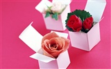Flowers and gifts wallpaper (1)