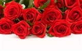 Large Rose Photo Wallpaper (4) #3