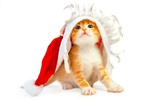 1920 Christmas Theme HD Wallpapers (10) #16