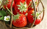 HD wallpaper fresh strawberries #13