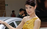 2010 Beijing International Auto Show beauty (rebar works)