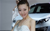 2010 Beijing International Auto Show beauty (rebar works) #21