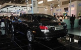 2010 Beijing International Auto Show Heung Che (rebar works) #5