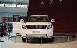 2010 Beijing International Auto Show Heung Che (rebar works) #12