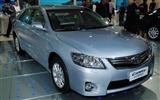 2010 Beijing International Auto Show Heung Che (rebar works) #22