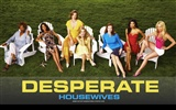Desperate Housewives 絕望的主婦 #37