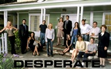 Desperate Housewives 絕望的主婦 #39