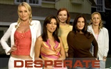 Desperate Housewives 絕望的主婦 #41